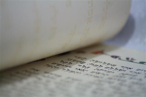 מגילת אסתר נגללת
